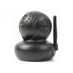 Skytronic Draadloze IP-Camera met Pan/Tilt SD Record